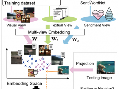 Multi-View Embedding for Image Sentiment Analysis