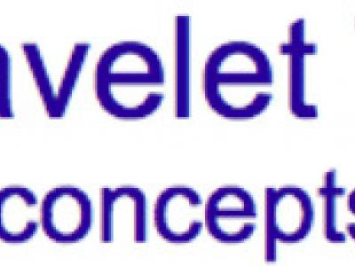 Discrete Wavelet Transforms: some tips, tricks, concepts, and applications.