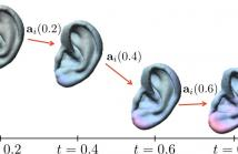 LDDMM morphing of ear shape