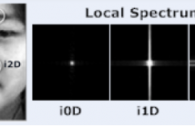 Intrinsic two-dimensional local structures